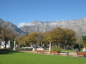company-garden-vue-table-mountain