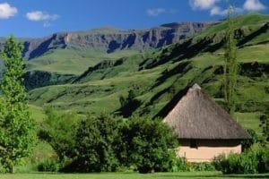 drakensberg-habitat-afrique-du-sud-decouverte