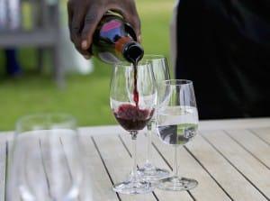 route-des-vins-degustation-is-afrique-du-sud-decouverte