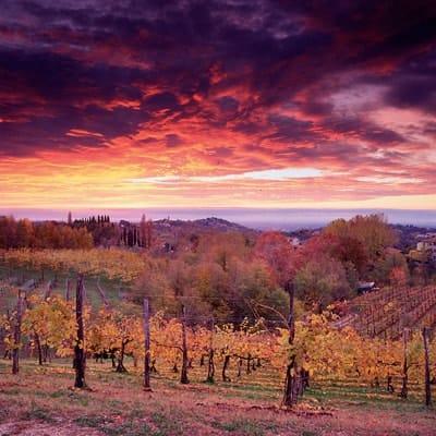 route-vins-coucher-soleil-afrique-du-sud-decouverte