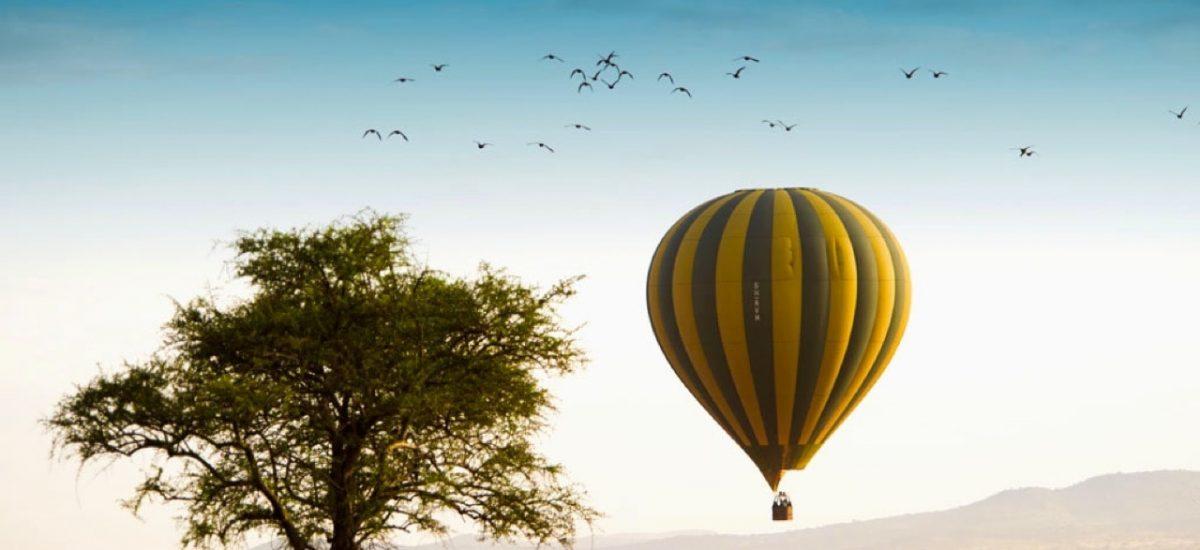 La montgolfière sur la savane sud-africaine