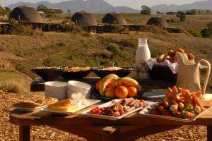 buffet-safari-afrique-du-sud-decouverte