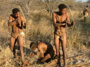 bushman-arc-afrique-du-sud-decouverte