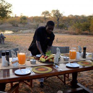 Déjeuner dans la Savane avec Kambaku Safari lodge et Afrique du sud Decouverte