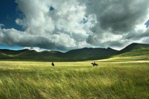 lesotho-paysage-chevaux-afrique-du-sud-decouverte