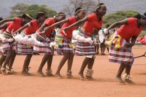 venda-danses-traditionnelles-afrique-du-sud-decouverte