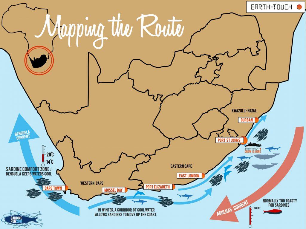 carte-sardine-run-afrique-du-sud