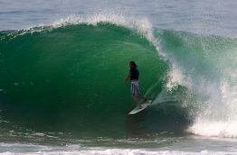 Surf en Afrique du Sud