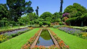 jardin-botanique-durban--Kwazulu-Natal