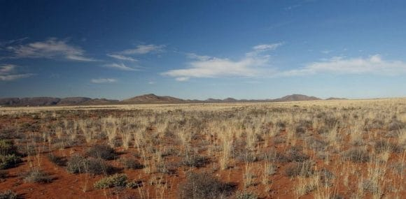 desert-plateforme-afrique-du-sud-decouverte