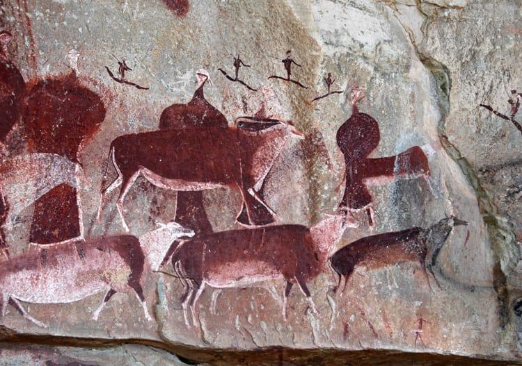 Peintures rupestres bushman en Afrique du Sud