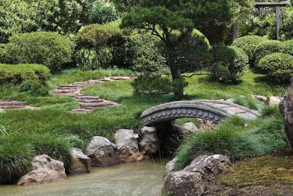 Jardin japonais en Afrique du Sud