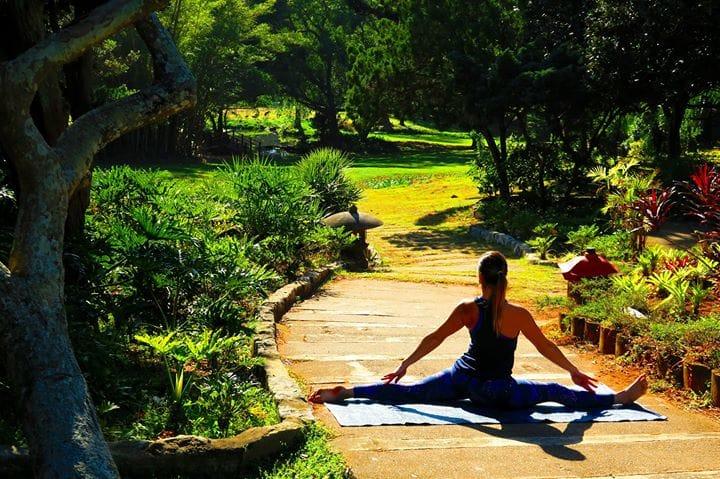 jardins-japonais4-afrique-du-sud-decouverte