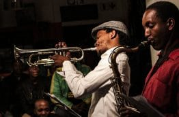 jazz-safari-afrique-du-sud-decouverte