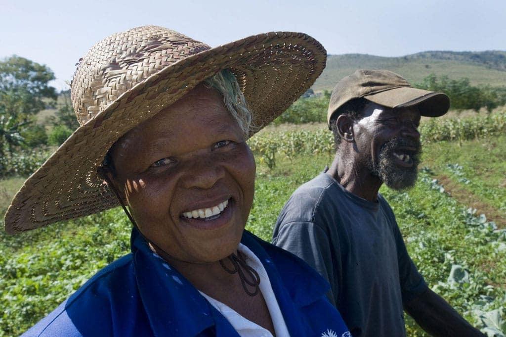 swaziland-ferme-afrique-du-sud-decouverte