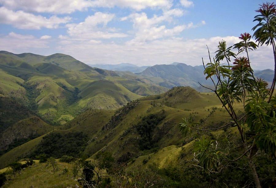 swaziland-highveld-afrique-du-sud-decouverte