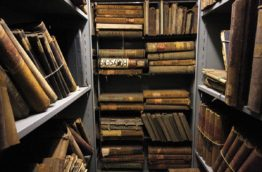 archives-afrique-du-sud-decouverte