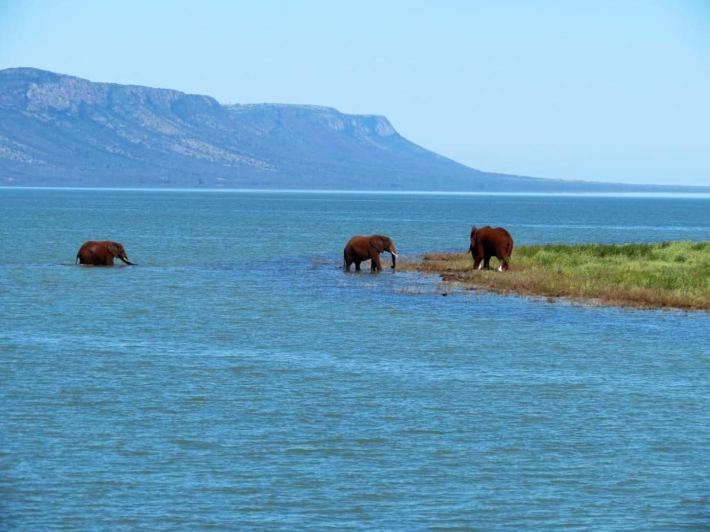 endroits-naturels-elephant-coast-afrique-du-sud-decouverte