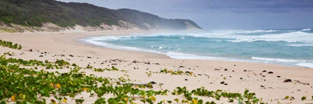 endroits-naturels-cape-vidal-plage-afrique-du-sud-decouverte