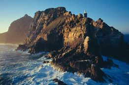 cape-point-afrique-du-sud-decouverte