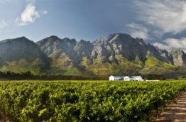 vins-du-cap-franschhoek-afrique-du-sud-decouverte