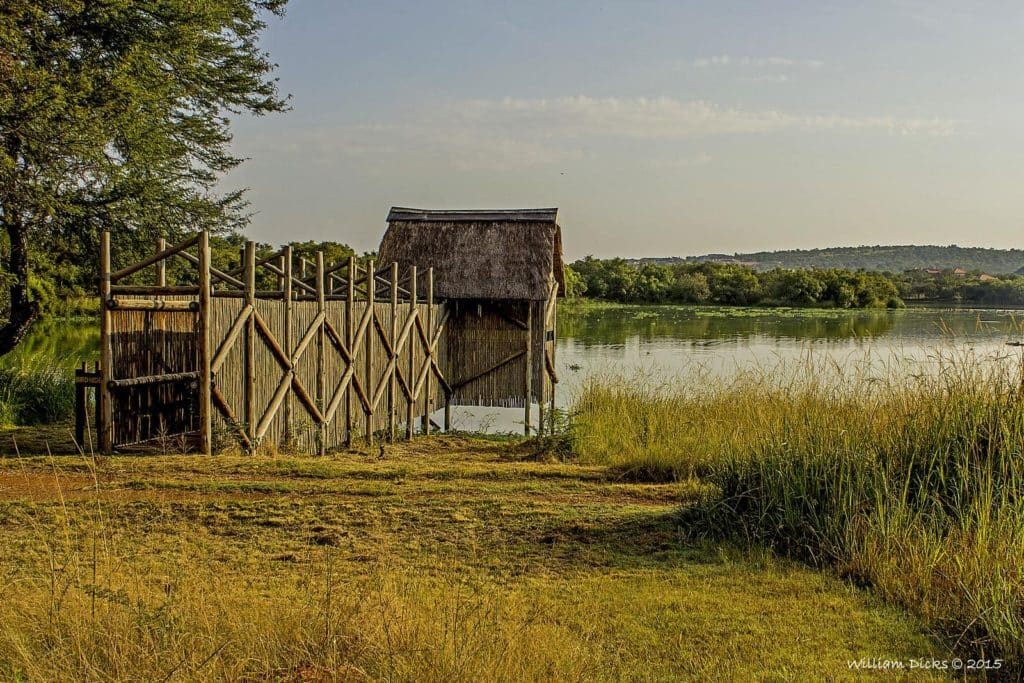 roodeplaat-mirador-animaux-afrique-du-sud-decouverte