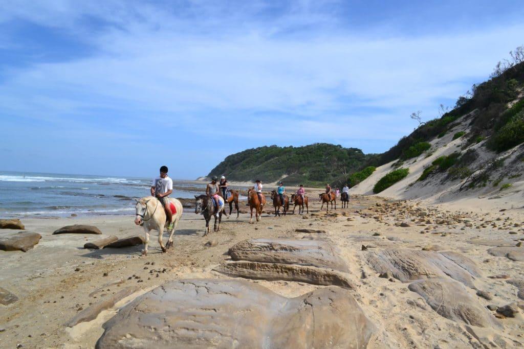 chintsa-cheval-plage-afrique-du-sud-decouverte