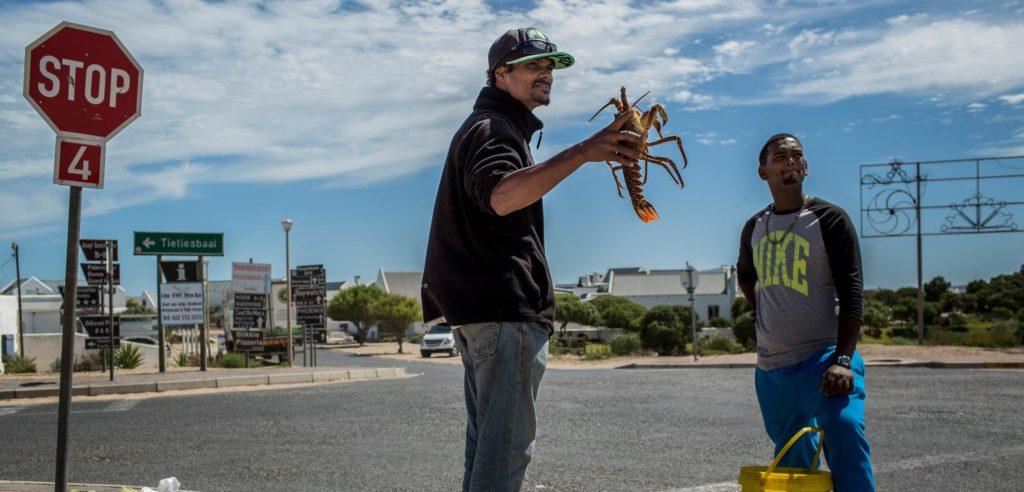paternoster-homard-afrique-du-sud-decouverte