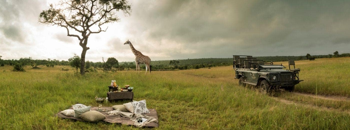 safari-preparation-afrique-du-sud-decouverte