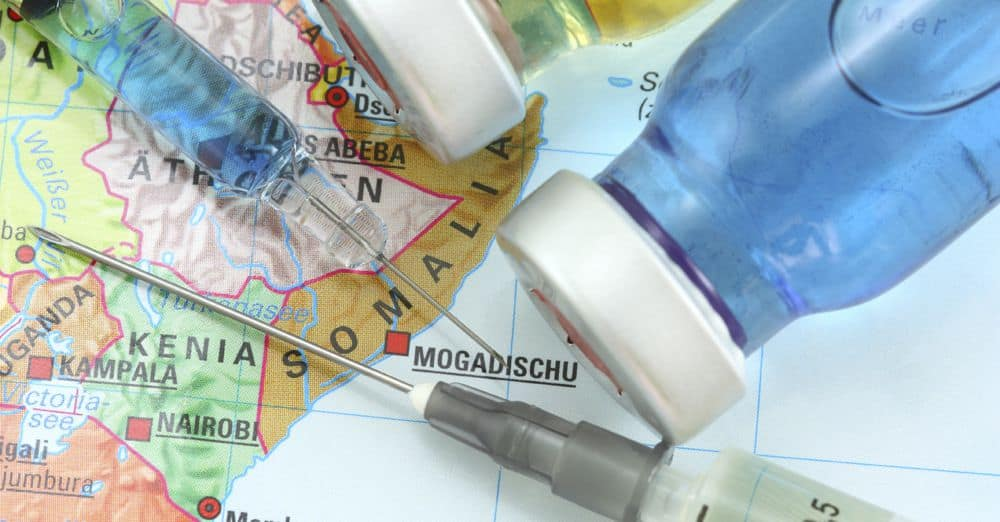 safari-vaccin-afrique-du-sud-decouverte