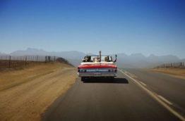 voyage-afrique-du-sud-decouverte