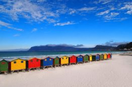 muizenberg-cover-plage-afrique-du-sud-decouverte