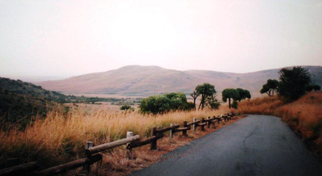 suikerbosrand-roadtrip-afrique-du-sud-decouverte