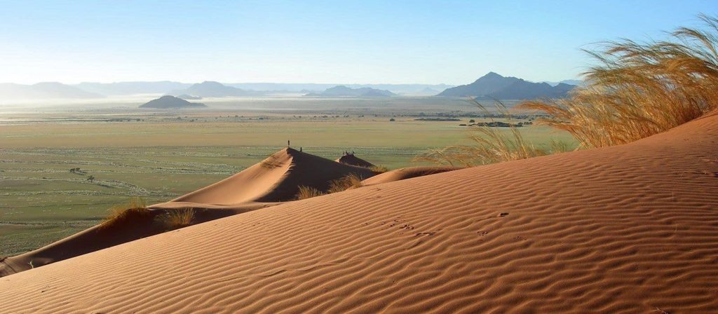 kalahari-dune-sable-afrique-du-sud-decouverte