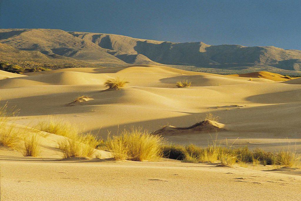 witsand-dunes-afrique-du-sud-decouverte