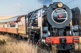 magaliesburg-express-train-afrique-du-sud-decouverte