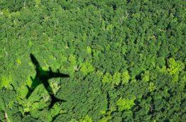 voyage-vert-cover-afrique-du-sud-decouverte
