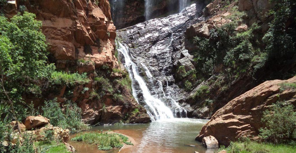 gauteng-jardin-botanique-walter-sisulu-afrique-du-sud-decouverte