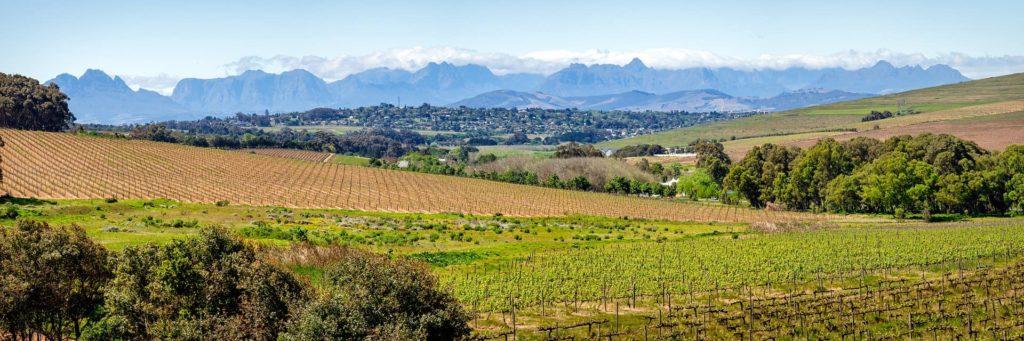route-des-vins-du-cap-1-afrique-du-sud-decouverte