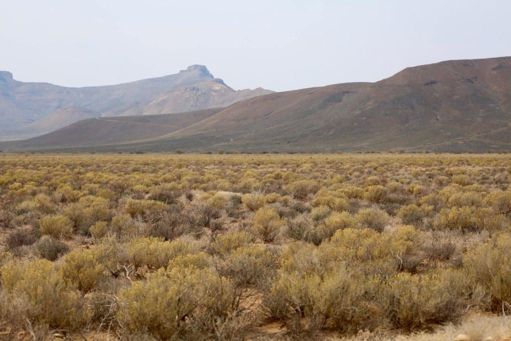 montagnes-roggeveld-afrique-du-sud-decouverte