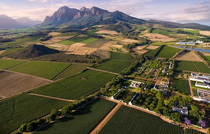 vignobles-babel-at-babylonstoren-franschhoek-afrique-du-sud-decouverte